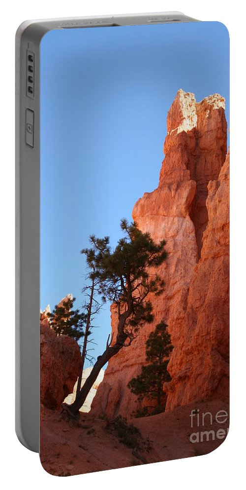 Canyon Portable Battery Charger featuring the photograph Red Rocks Of Bryce Canyon by Christiane Schulze Art And Photography