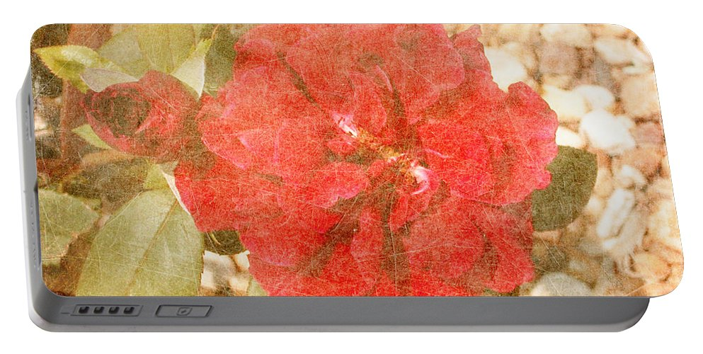 Roses Prints Portable Battery Charger featuring the photograph Red Rose At Noon by Alys Caviness-Gober