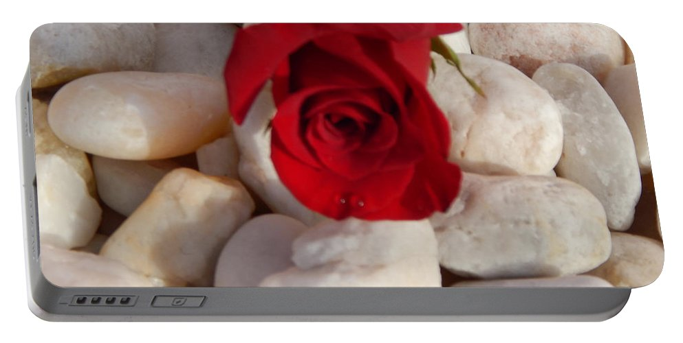 Red Rose Portable Battery Charger featuring the photograph Red Rose On River Rocks by To-Tam Gerwe