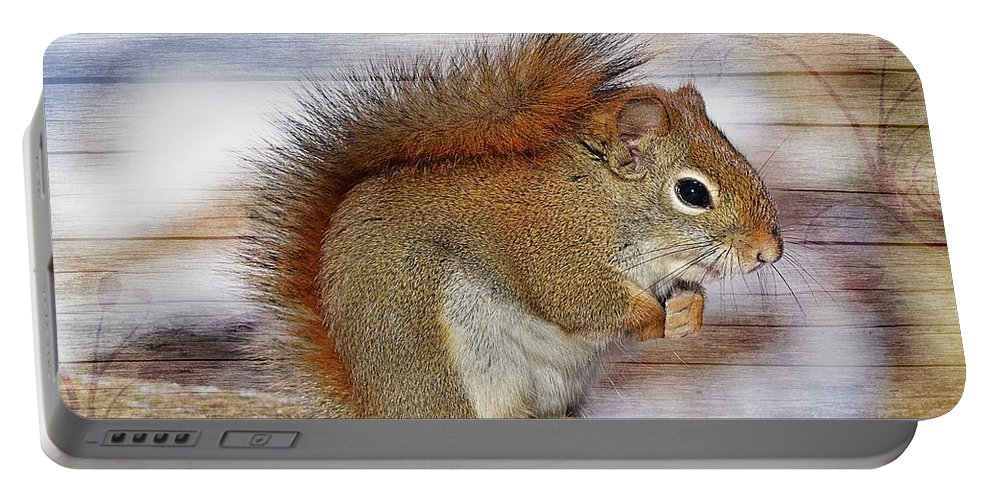 Squirrel Portable Battery Charger featuring the photograph Red Squirrel by FL collection