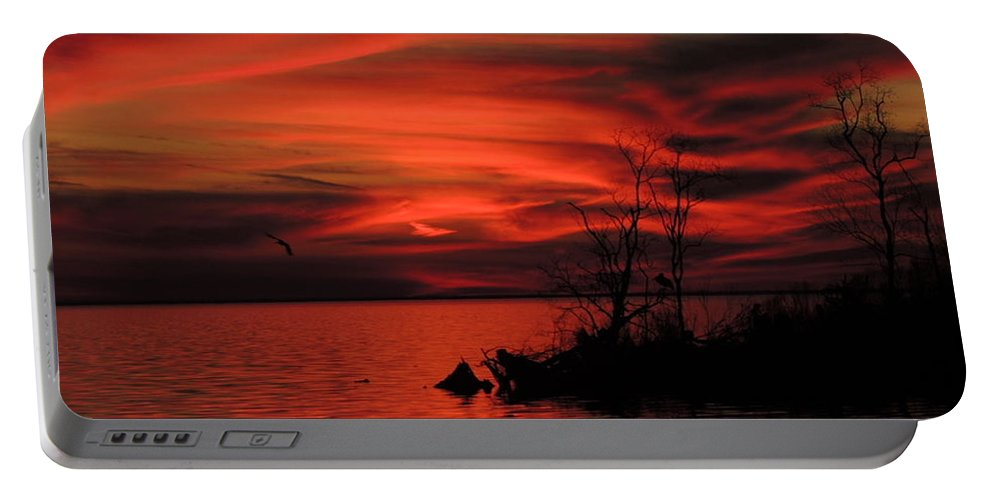 Sunset Portable Battery Charger featuring the photograph Red Velvet by Charlotte Schafer