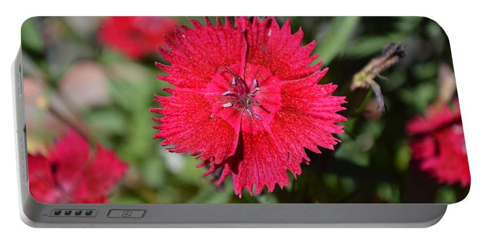 Barbara Snyder Portable Battery Charger featuring the digital art Red Winery Flower by Barbara Snyder