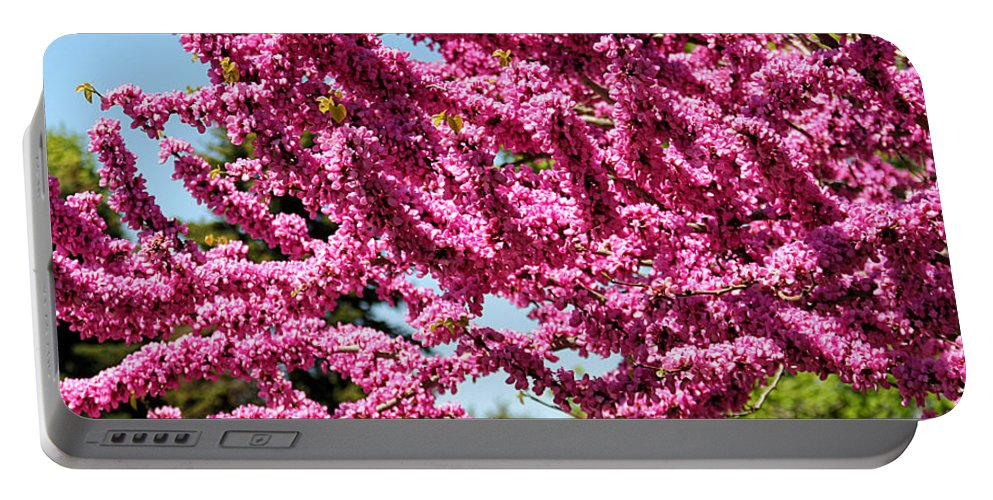 Redbud Portable Battery Charger featuring the photograph Redbud In Bloom by William Selander