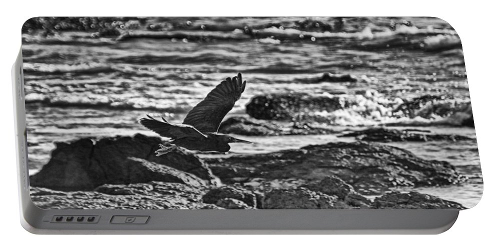 Silhouette Portable Battery Charger featuring the photograph Reef Egret In Flight by Douglas Barnard