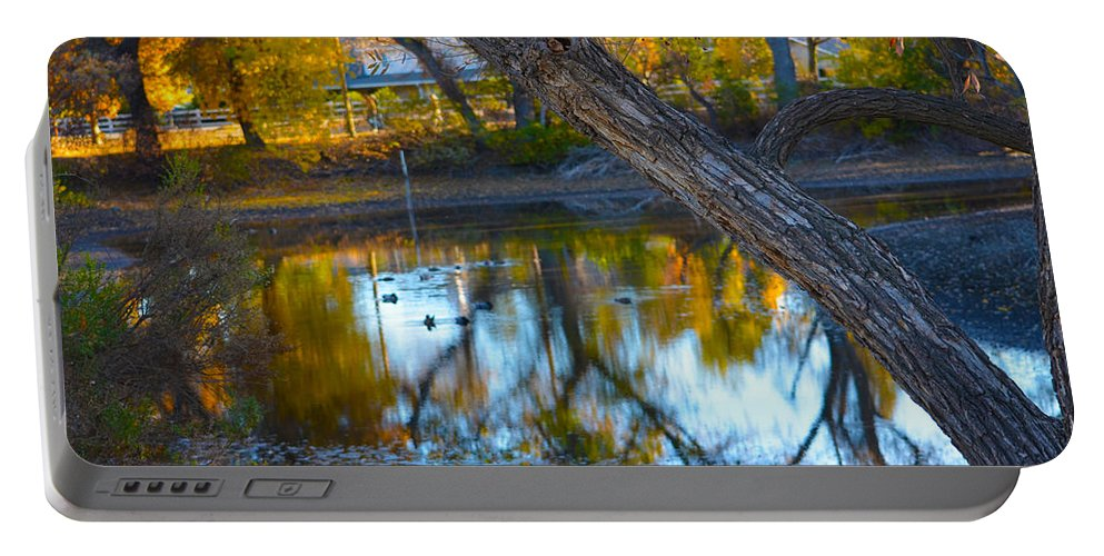 Trees Portable Battery Charger featuring the photograph Reflections Of A Pond 2 by Deprise Brescia