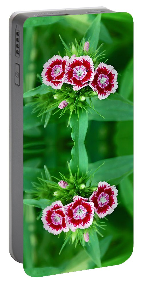 Flower Portable Battery Charger featuring the photograph Reflections Of A Summer Bouquet by Aimee L Maher ALM GALLERY