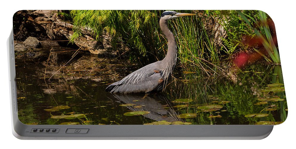Bird Portable Battery Charger featuring the photograph Reflective Great Blue Heron by Jordan Blackstone