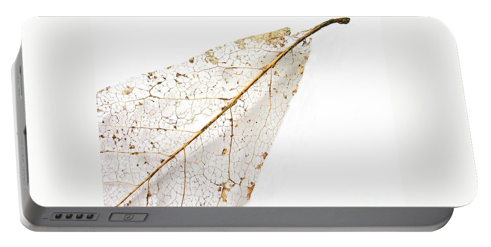 Leaf Portable Battery Charger featuring the photograph Remnant Leaf by Ann Horn