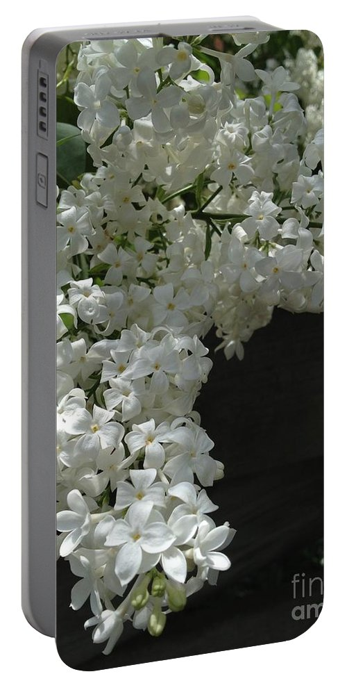 Lilac Portable Battery Charger featuring the photograph Requests by Joseph Yarbrough