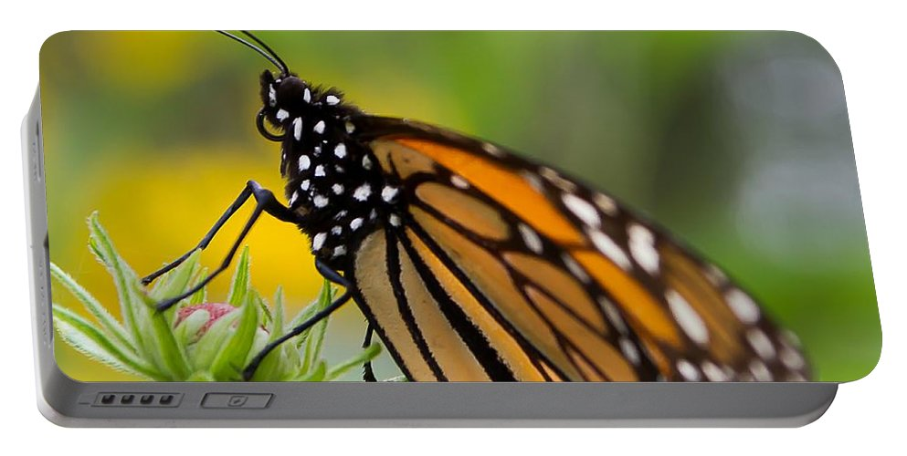 Monarch Portable Battery Charger featuring the photograph Resting Monarch Butterfly by Nikki Vig