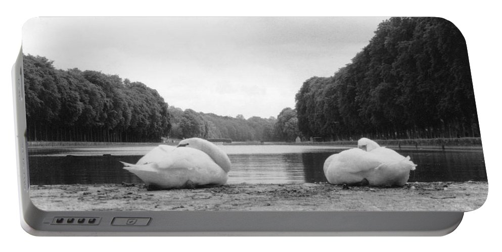 Swans Portable Battery Charger featuring the photograph Resting Swans by Christine Jepsen