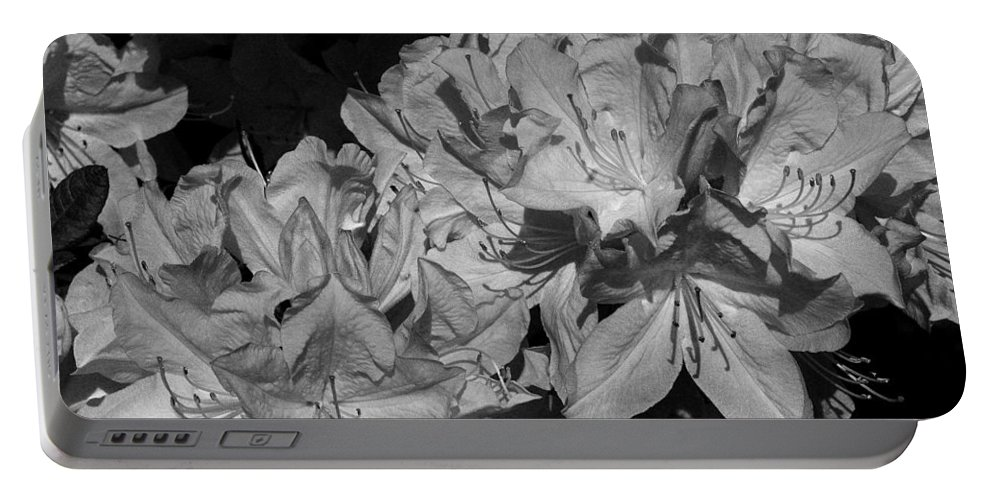 Flower Portable Battery Charger featuring the photograph Rhododendron Heaven In Black And White by Jeanette C Landstrom