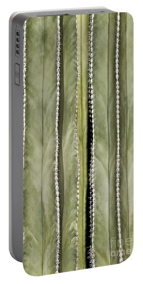 Arizona Portable Battery Charger featuring the photograph Ribs by Kathy McClure