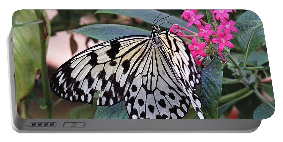 Rice Paper Butterfly Portable Battery Charger featuring the photograph Rice Paper Butterfly by MTBobbins Photography