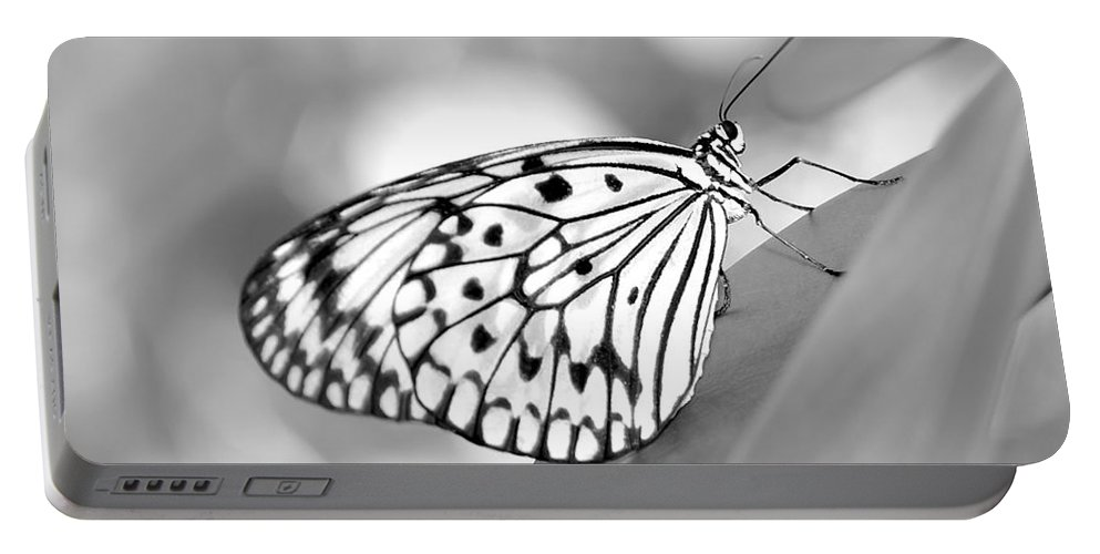 Amazing Portable Battery Charger featuring the photograph Rice Paper Butterfly Resting For A Second by Sabrina L Ryan