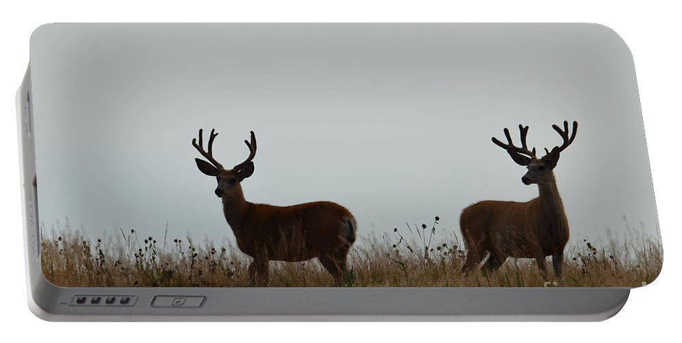 Bucks Portable Battery Charger featuring the photograph Ridge View by Deanna Cagle