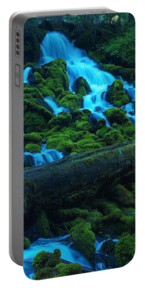 Tree Portable Battery Charger featuring the photograph Right Side Of Clearwater Falls by Teri Schuster