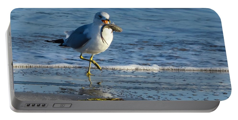 Ring-billed Gull With Its Catch Portable Battery Charger featuring the photograph Ring-billed Gull With Its Catch by Debra Martz