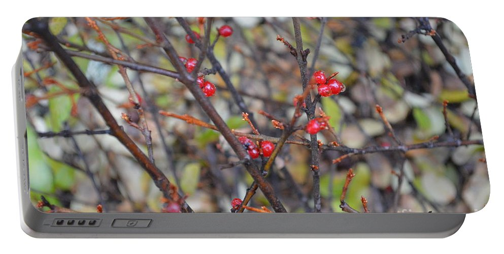 Berries Portable Battery Charger featuring the photograph Ripe For The Picking by Brian Boyle