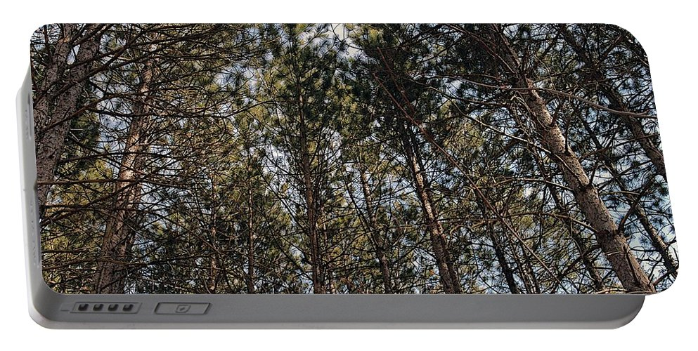 Pine Trees Portable Battery Charger featuring the photograph Rise Up by Joseph Yarbrough