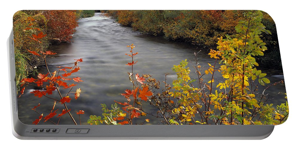 Palisades Creek Portable Battery Charger featuring the photograph River Color by Leland D Howard