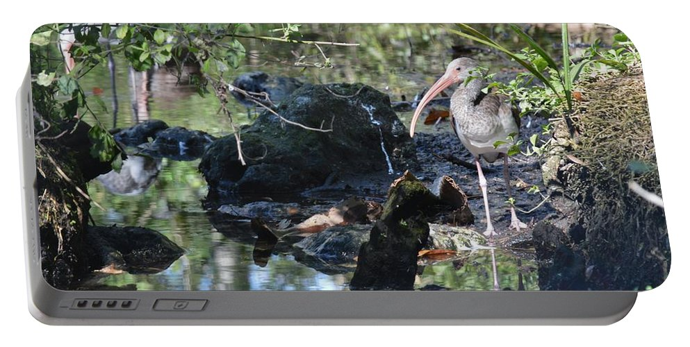 Bird Portable Battery Charger featuring the photograph River Guard by Linda Kerkau