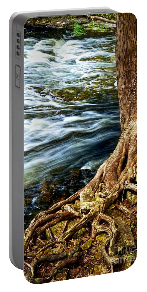 Trunk Portable Battery Charger featuring the photograph River Through Woods by Elena Elisseeva