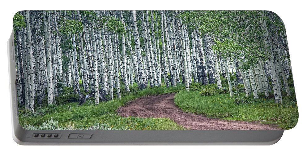 Art Portable Battery Charger featuring the photograph Road Through A Birch Tree Grove by Randall Nyhof