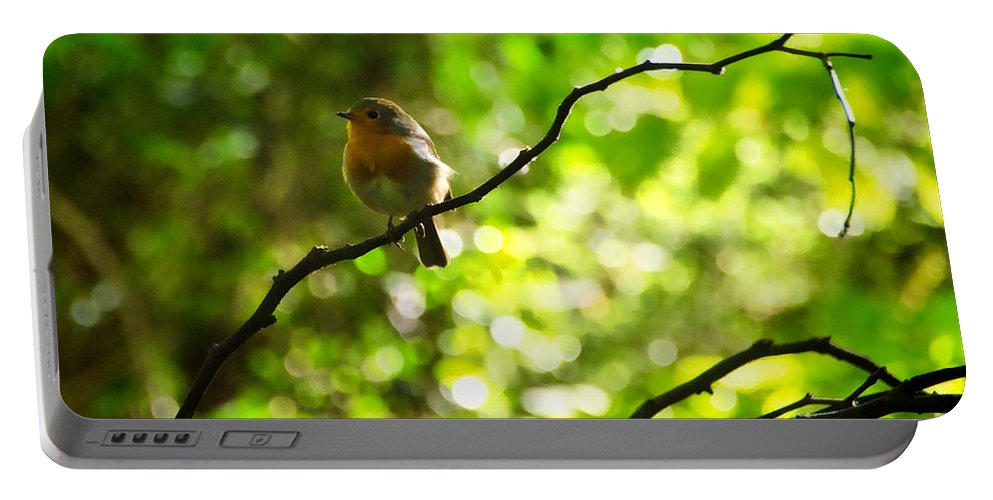 Peek-swint Portable Battery Charger featuring the photograph Robin In The Glade by Susie Peek