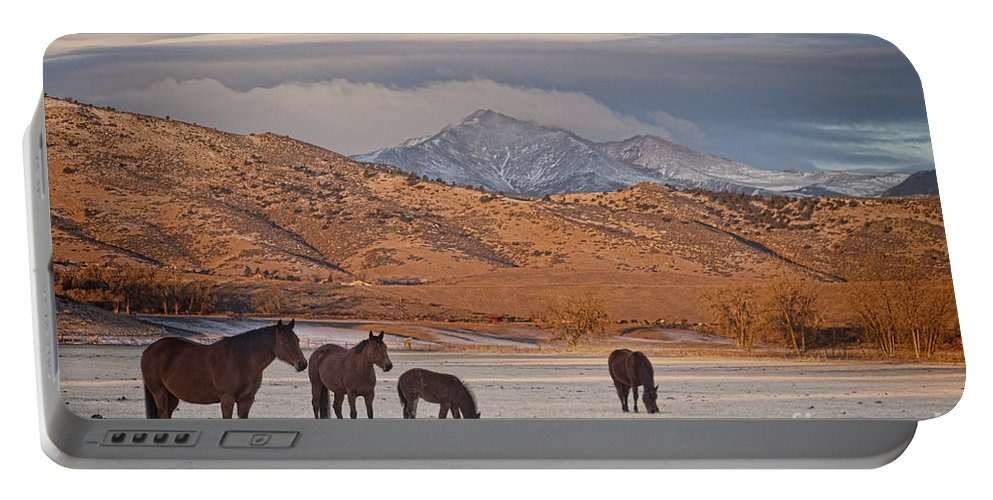 Horses; Horse; Country; Rustic; Mountains; rocky Mountains; Colorado; boulder County Landscapes; Snow; Winter; Portable Battery Charger featuring the photograph Rocky Mountain Country Morning by James BO Insogna