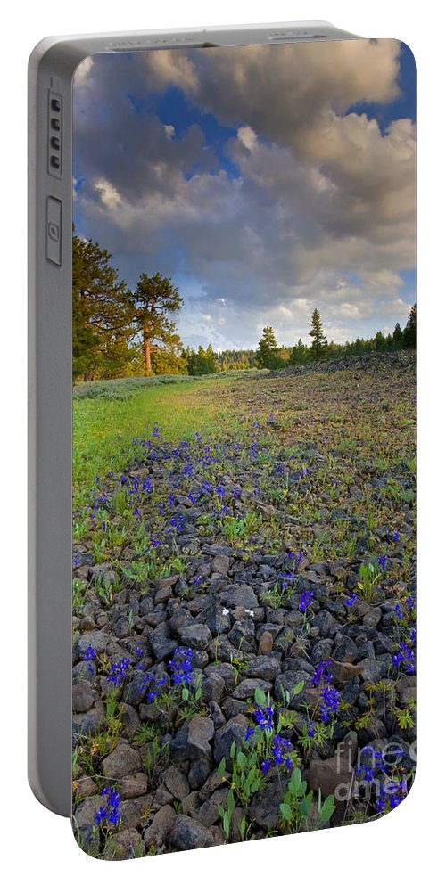 Larkspur Portable Battery Charger featuring the photograph Rocky Prairie Cloud Explosion by Mike Dawson