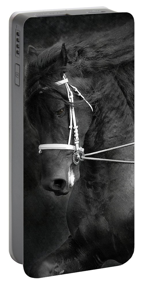 Friesian Portable Battery Charger featuring the photograph Romke 401 Long Line by Fran J Scott