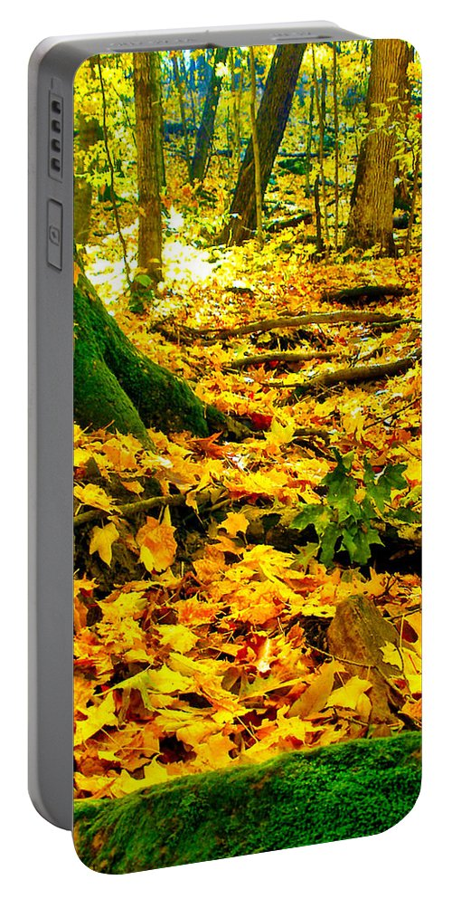 Fall Portable Battery Charger featuring the photograph Root Steps by Zafer Gurel