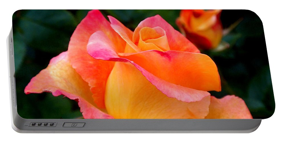 Rose Portable Battery Charger featuring the photograph Rose Beauty by Rona Black