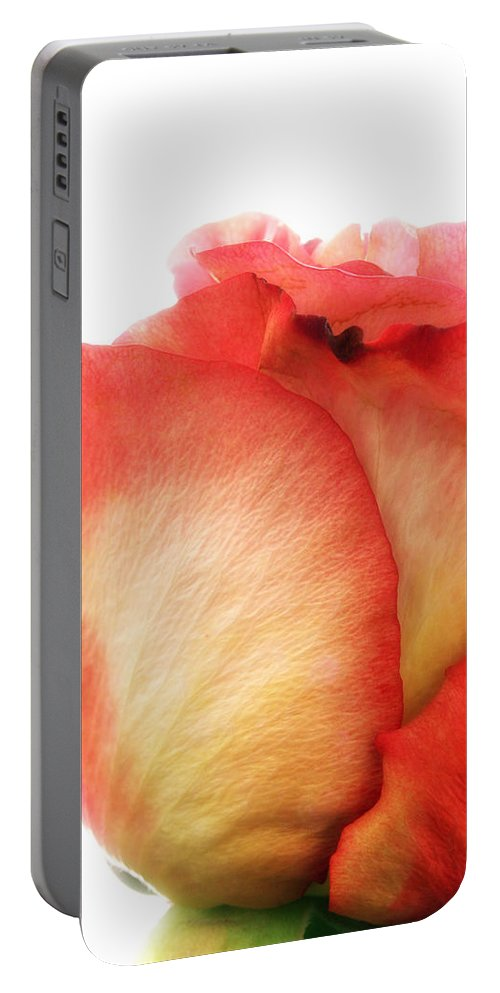 Rose Portable Battery Charger featuring the photograph Rose Bud 1 by Joseph Hedaya