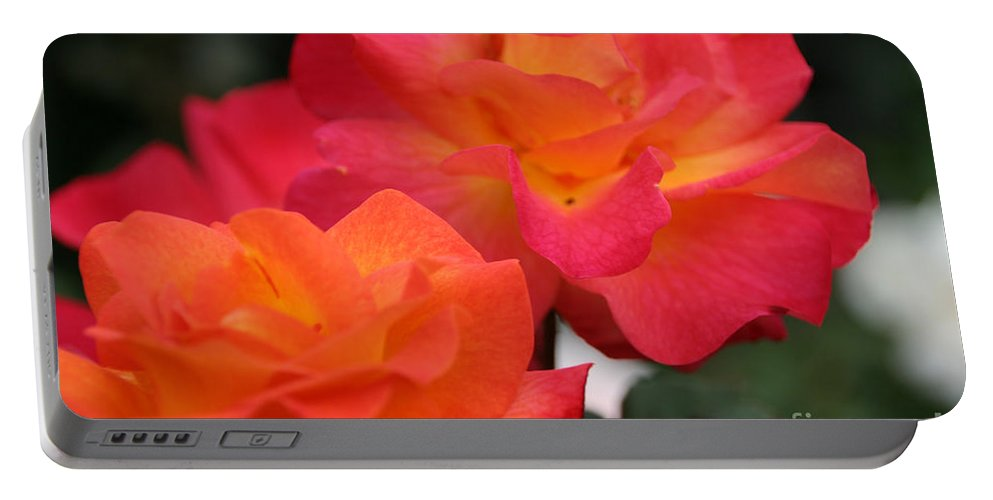 Flower Portable Battery Charger featuring the photograph Rose Glow by Susan Herber
