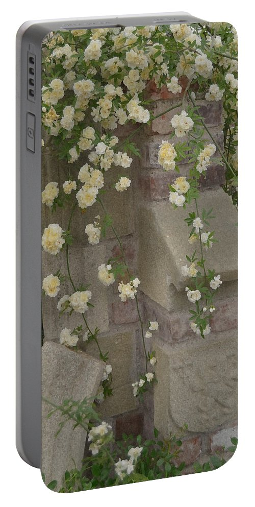 Evocative Portable Battery Charger featuring the photograph Rose Sprawling On Stone by Tom Wurl
