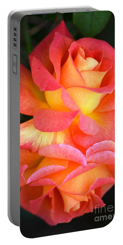 Multi Colored Roses Portable Battery Charger featuring the photograph Roses Of Many Colors by Deb Halloran