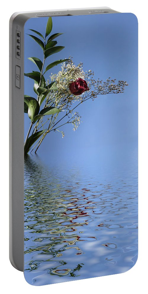 Roses Portable Battery Charger featuring the photograph Rosy Reflection - Left Side by Gravityx9 Designs