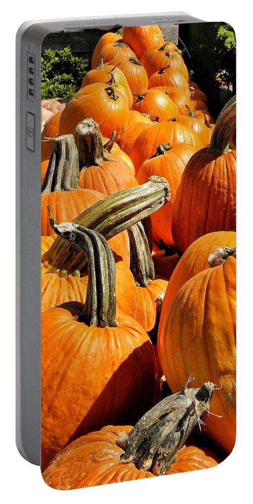 Pumpkins Portable Battery Charger featuring the photograph Rows Of Pumpkins Greeting Card by Jean Goodwin Brooks