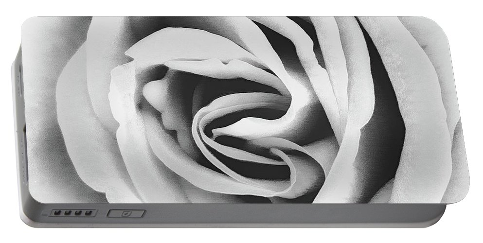 Roses Portable Battery Charger featuring the photograph Rubellite Rose Bw Palm Springs by William Dey