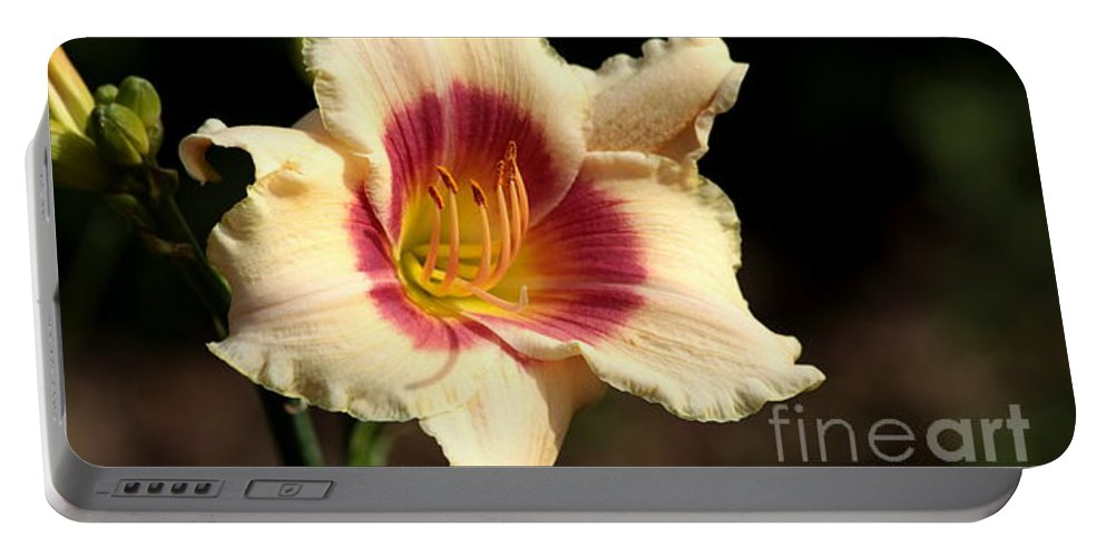 Day Portable Battery Charger featuring the photograph Ruby Peach by Kenny Glotfelty