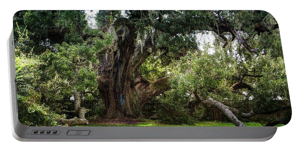 Oak Tree Portable Battery Charger featuring the photograph Ruskin Oak - Ocean Springs by Joan McCool