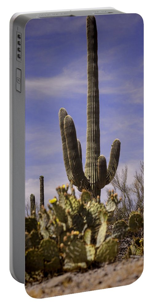 Saguaro Portable Battery Charger featuring the photograph Saguaro by Heather Applegate