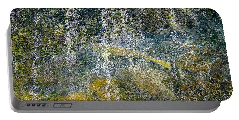 Abstract Portable Battery Charger featuring the photograph Salmon Art by Roxy Hurtubise