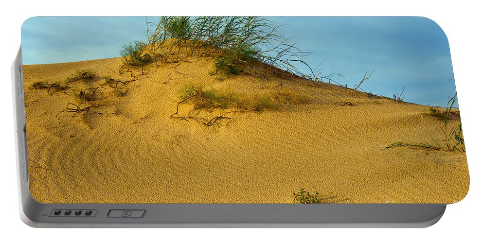 Monahans Sand Dunes State Park Texas Parks Desert Deserts Plant Plants Foliage Color Dune Desertscape Desertscapes Bush Bushes Landscape Landscapes Nature Portable Battery Charger featuring the photograph Sand Hill by Bob Phillips