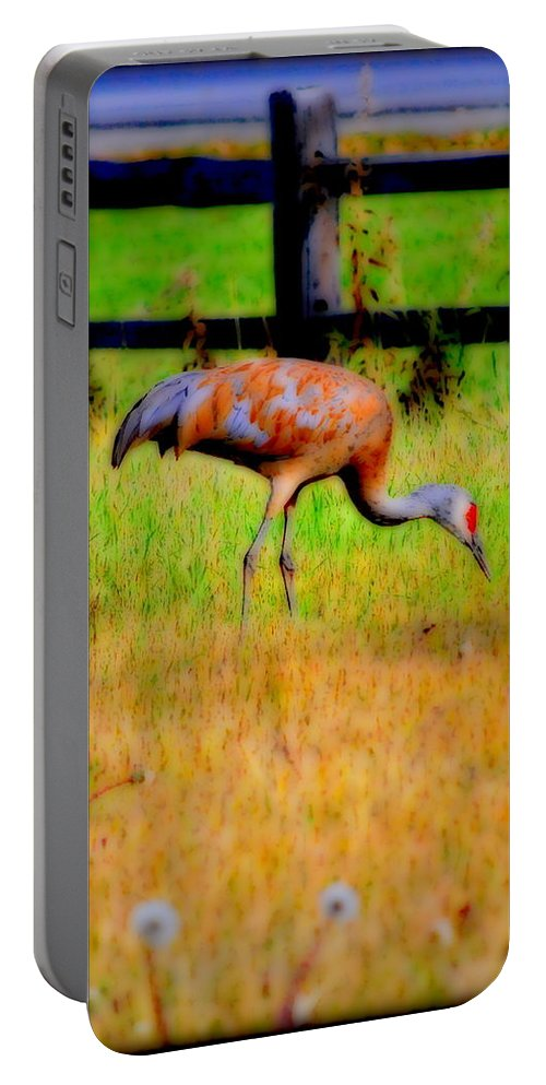 Migratory Portable Battery Charger featuring the photograph Sandhill Crane I by Kathy Sampson