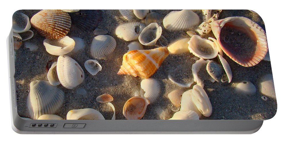 Conch Portable Battery Charger featuring the photograph Sanibel Island Shells 2 by Nancy L Marshall