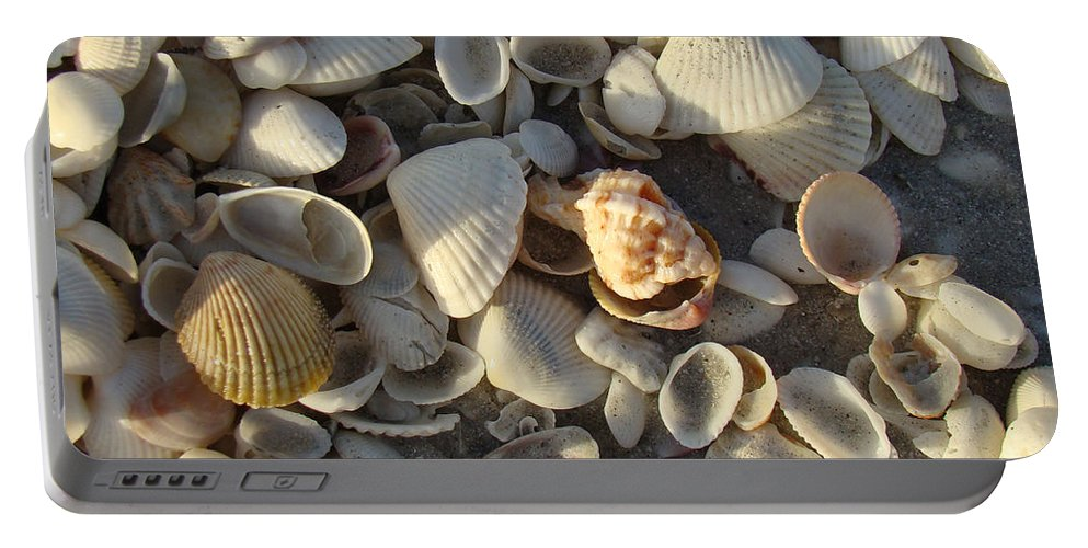 Shells Portable Battery Charger featuring the photograph Sanibel Island Shells 3 by Nancy L Marshall