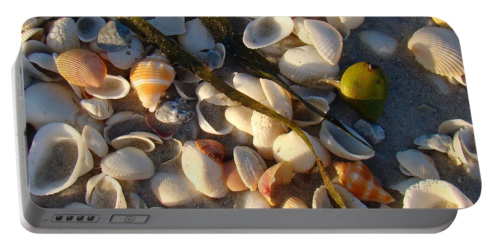 Conchs Portable Battery Charger featuring the photograph Sanibel Island Shells 4 by Nancy L Marshall